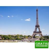 Bekijk de deal van Tripper Tickets: Ontdek Parijs op een Segway!