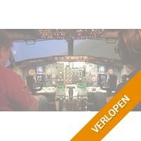Vliegen in professionele simulator