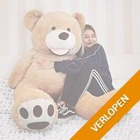Grote Teddybeer  160 cm