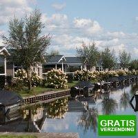 Bekijk de deal van D-deals.nl: Verblijf in een vakantiechalet aan het water