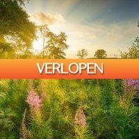 D-deals.nl: 3 of 4 dagen aan de rand van NP Drents-Friese Wold