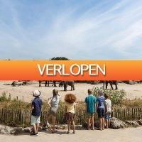 D-deals.nl: Verblijf een weekend of midweek op Vakantiepark Dierenbos