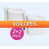 Koopjedeal.nl 2: Orthopedisch anti-stress kussens