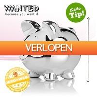 voorHAAR.nl: Wanted spaarvarken XXL