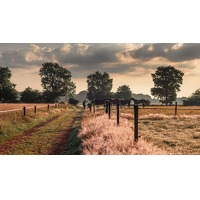 Bekijk de deal van Voordeeluitjes.nl 2: Hotel Bosrijk Ruighenrode