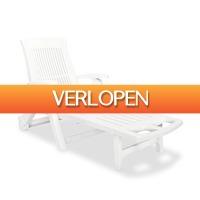 VidaXL.nl: vidaXL ligstoel met voetsteun