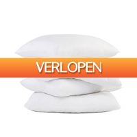 Koopjedeal.nl 1: Anti-stress hoofdkussens van SilverStar