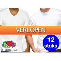 DealDonkey.com: 12 witte Fruit of the Loom heren T-shirts