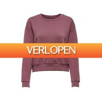 Avantisport.nl: Only Play Lounge LS O-Neck dames sweater