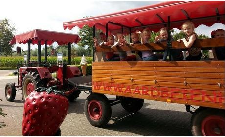 Groupon: Toegang speelpark Aardbeienhof