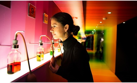 Groupon: House of Bols Experience