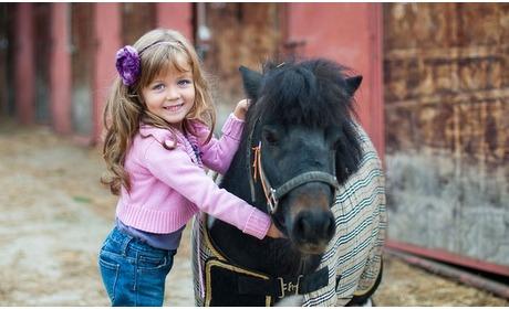 Groupon: Ponyrijlessen