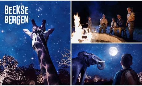 Social Deal: Entree voor Winterdroom in Safaripark Beekse Bergen