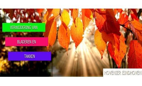 Wowdeal: 2 of 4 uur tuinonderhoud van Hovenier Eindhoven