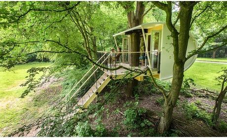 Groupon: Flevoland: unieke boomhut-overnachting