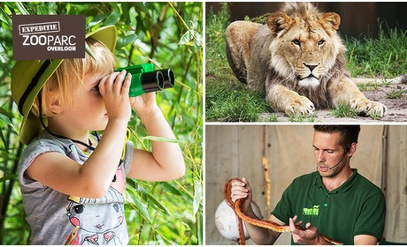 Social Deal: Entree ZooParc Overloon