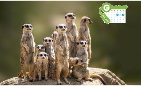 Groupon: Emmen: 1 of 2 nachten + tickets dierentuin