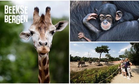 Social Deal: Entree Safaripark Beekse Bergen