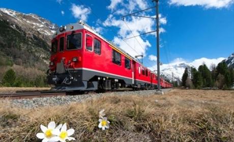 PeterLanghout.nl: 8 dagen busreis Zwitserse Alpen incl. treinreizen