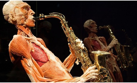 Groupon: Tickets BODY WORLDS