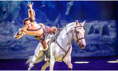 Groupon: Ticket voor paardenshow CAVALLUNA