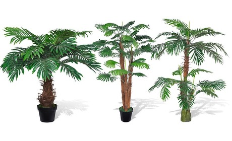 Groupon: Kunst palmbomen