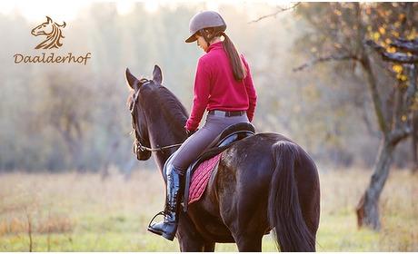 Social Deal: 1 of 5 (prive)paardrijlessen