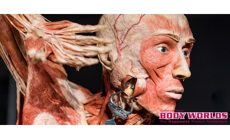 Wowdeal: Entree BODY WORLDS Amsterdam