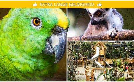 Social Deal: Familieseizoenskaart Papegaaienpark Zoo Veldhoven