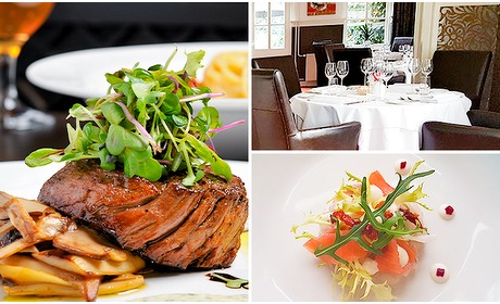 Social Deal: Culinair 4-gangendiner + 2 amuses bij Olio