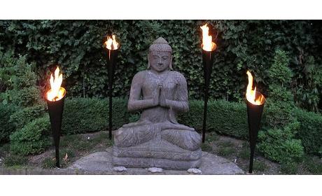 Wowdeal: Mooie chique torch voor in de tuin