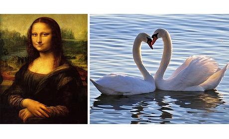 Wowdeal: Diamond Painting pakket: Mona Lisa of witte zwanen (inclusief verzending)