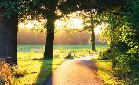 Voordeeluitjes.nl: Vakantiepark De Lourenshoeve